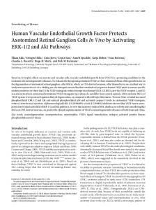 Human Vascular Endothelial Growth Factor ... - Semantic Scholar