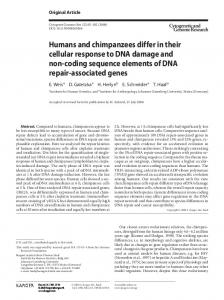 Humans and chimpanzees differ in their cellular response to DNA ...