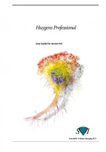 Huygens Professional User Guide