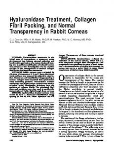 Hyaluronidase Treatment, Collagen Fibril Packing ... - Semantic Scholar