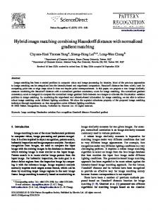 Hybrid image matching combining Hausdorff distance with normalized ...
