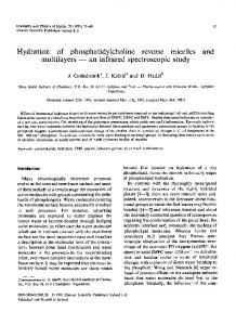 Hydration of phosphatidylcholine reverse micelles ... - Science Direct