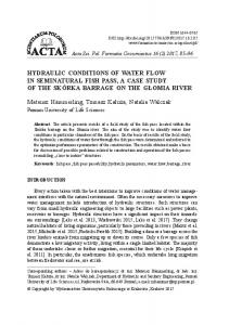 HYDRAULIC CONDITIONS OF WATER FLOW IN SEMINATURAL ...