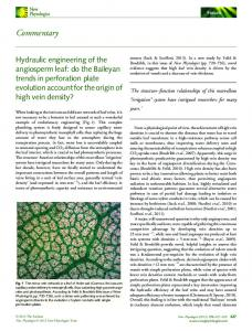 Hydraulic engineering of the angiosperm leaf ... - Wiley Online Library