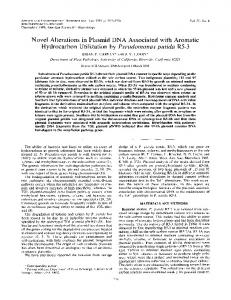 Hydrocarbon Utilization by Pseudomonas putida R5-3 - Applied and ...