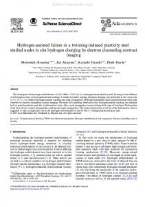 Hydrogen-assisted failure in a twinning-induced ... - Dierk Raabe