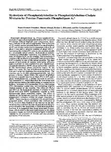 Hydrolysis of Phosphatidylcholine in Phosphatidylcholine-Cholate ...