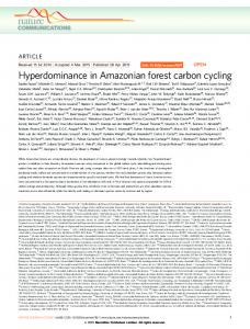 Hyperdominance in Amazonian forest carbon cycling