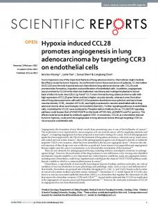 Hypoxia induced CCL28 promotes angiogenesis