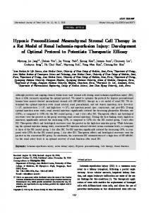 Hypoxic Preconditioned Mesenchymal Stromal Cell Therapy in a Rat