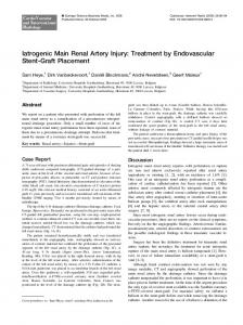 Iatrogenic Main Renal Artery Injury: Treatment by ... - Springer Link