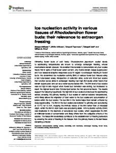 Ice nucleation activity in various tissues of