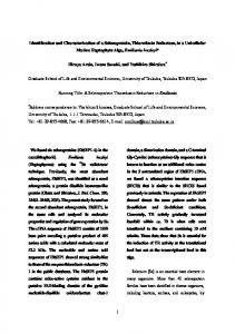Identification and Characterization of a Selenoprotein, Thioredoxin ...