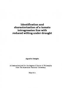 Identification and characterization of a tomato ...