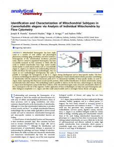 Identification and Characterization of Mitochondrial ... - ACS Publications