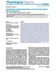 Identification and characterization of novel Kirrel ... - BioMedSearch