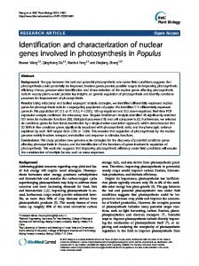 Identification and characterization of nuclear genes ... - CyberLeninka