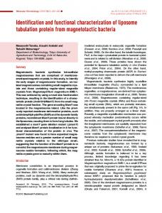 Identification and functional characterization of ... - Wiley Online Library