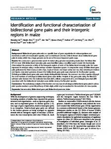 Identification and functional characterization of ... - BioMedSearch