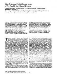 Identification and Partial Characterization of Two ... - BioMedSearch