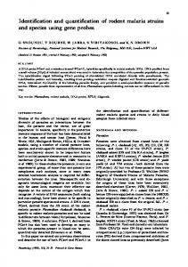 Identification and quantification of rodent malaria ...