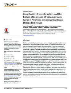 Identification, Characterization, and Diel Pattern of Expression ... - PLOS