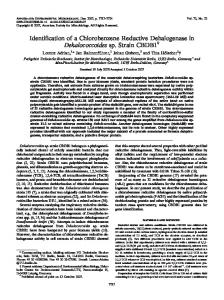Identification of a Chlorobenzene Reductive Dehalogenase in ...