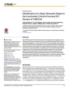 Identification of a Major Dimorphic Region in the ... - Semantic Scholar