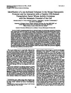 Identification of a ras-activated enhancer in the mouse osteopontin ...