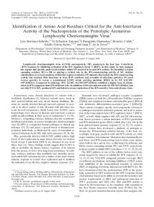 Identification of Amino Acid Residues Critical for ... - Journal of Virology