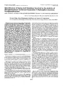 Identification of amino acid residues involved in the activity of ...
