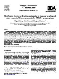 Identification of amino acid residues participating in the energy ... - Core