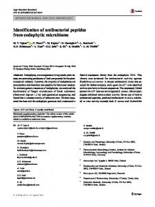 Identification of antibacterial peptides from endophytic ...