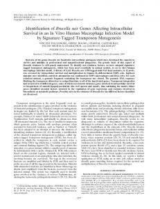 Identification of Brucella suis Genes Affecting Intracellular Survival in ...