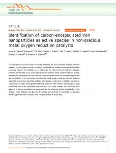Identification of carbon-encapsulated iron nanoparticles as ... - Nature