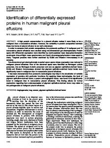 Identification of differentially expressed proteins in human malignant ...