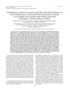 Identification of Helicobacter pylori and Other Helicobacter Species by ...
