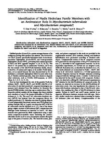 Identification of Nudix Hydrolase Family Members with an Antimutator ...