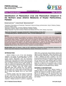 Identification of Plasmodium vivax and Plasmodium ...