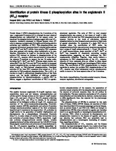 Identification of protein kinase C phosphorylation sites in the ...