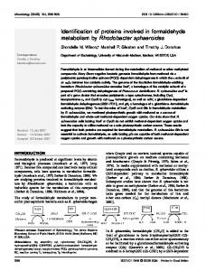 Identification of proteins involved in formaldehyde ... - CiteSeerX
