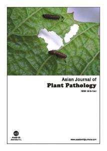 Identification of Pythium and Phytophthora Associated ...