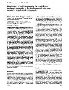 Identification of residues essential for catalysis and binding of ...
