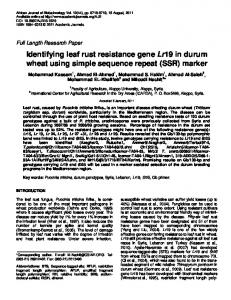 Identifying leaf rust resistance gene Lr19 in durum wheat ... - CiteSeerX