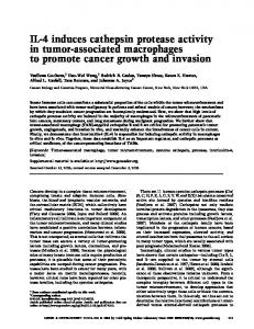 IL-4 induces cathepsin protease activity in tumor
