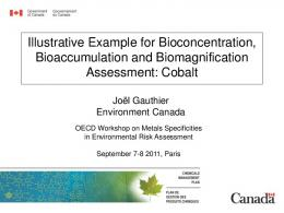 Illustrative Example for Bioconcentration, Bioaccumulation ... - OECD.org