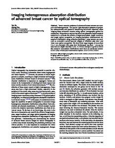 Imaging heterogeneous absorption distribution of advanced breast ...