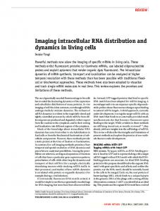 Imaging intracellular RNA distribution and ... - Gene Quantification