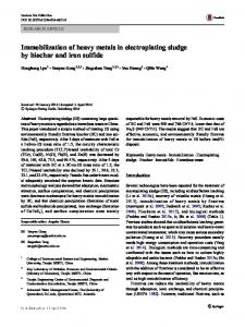 Immobilization of heavy metals in electroplating sludge by biochar and