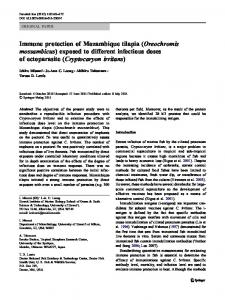 Immune protection of Mozambique tilapia ... - Springer Link